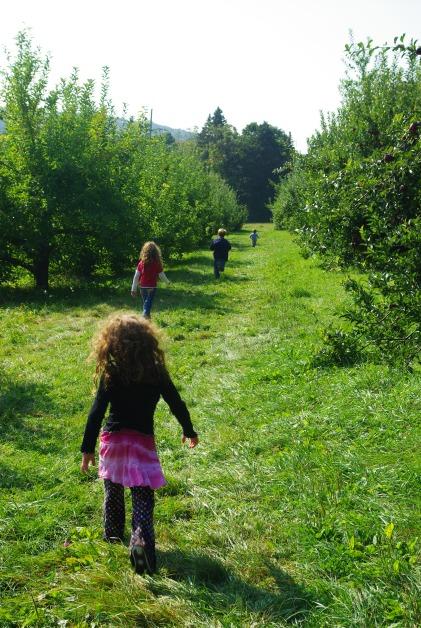 apple pick kids