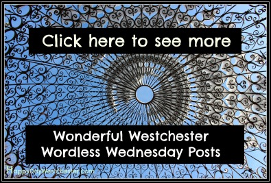 Happy Day See More Westchester Worldess Wednesday