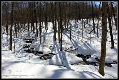 happy day westchester snowy stream ward pound ridge