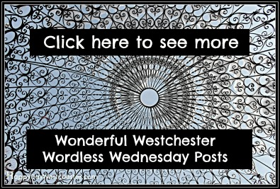Happy Day See More Westchester Worldess Wednesday gritty
